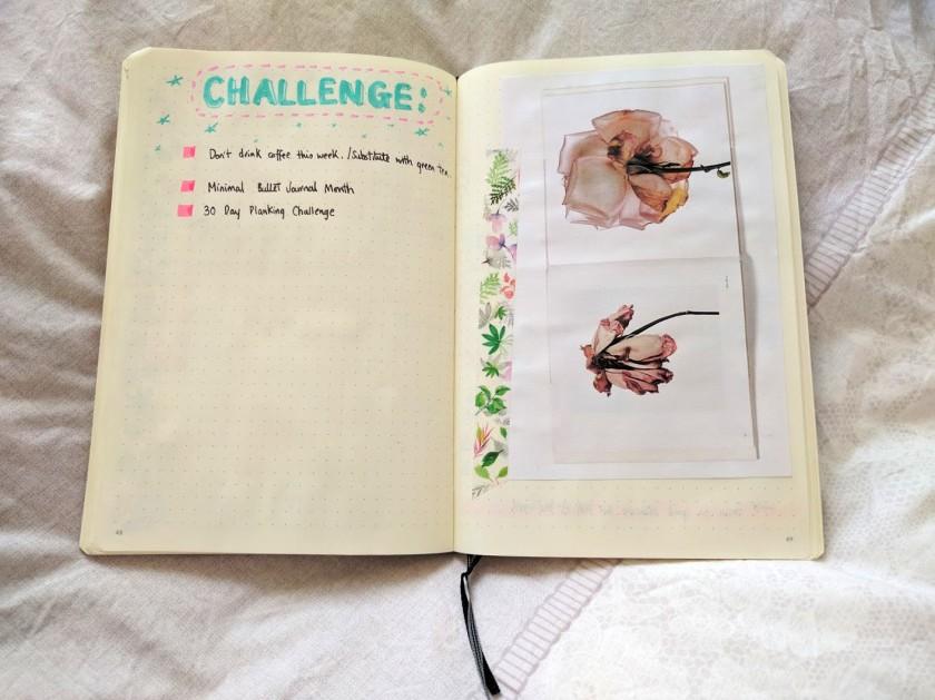 bulletjournal-challenge-hoiyinli